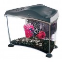 MARINA Betta Aquarium 6,7L Graphite